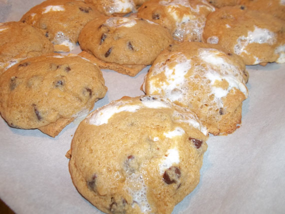 Whole Wheat Chocolate Chip Cookie Mix Whole Wheat S'more Cookie Mix
