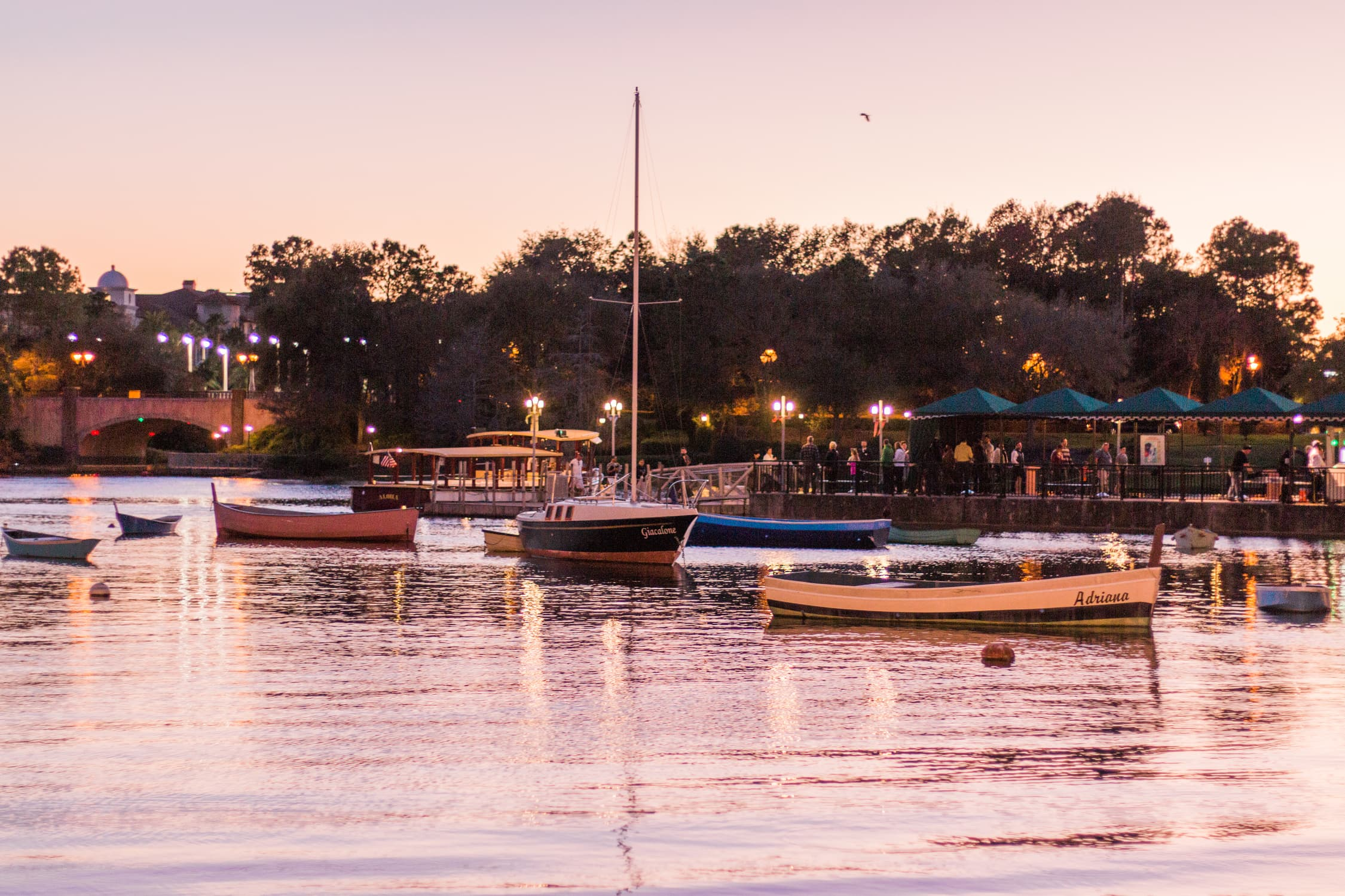 Harbor view of boats at sunset Portofino Bay Hotel