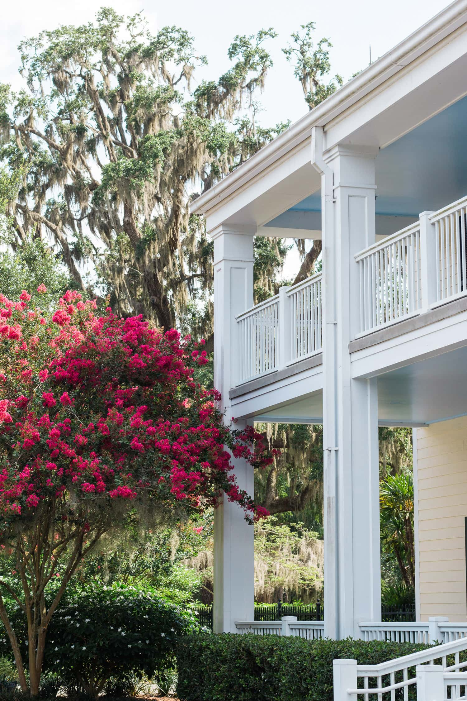 Leu Gardens is one of my favorite places in Orlando! Planning a trip to Orlando? I've rounded up the top 10 things to do in Orlando, Florida, that are guaranteed to make your trip a success. Whether you're moving to Orlando or just headed in on vacation, you will LOVE this list of fun activities in Orlando by Florida travel blogger Ashley Brooke Nicholas #CORTatHome sponsored by CORT Furniture | affordable travel tips, orlando vacation tips, vacation tips, florida travel