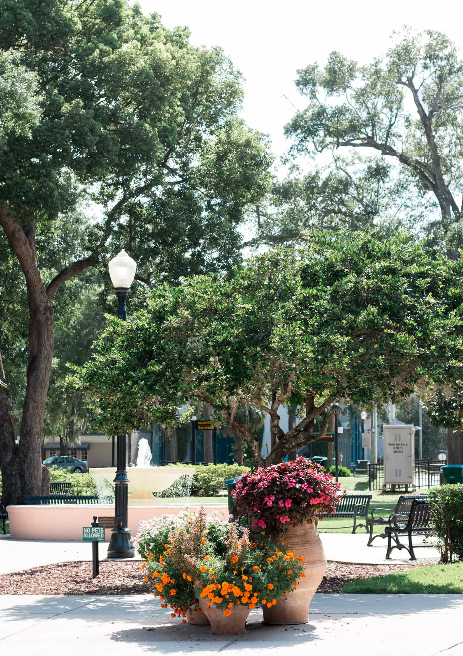 Park Avenue in Winter Park, Florida is one of Orlando's hidden gems! Planning a trip to Orlando? I've rounded up the top 10 things to do in Orlando, Florida, that are guaranteed to make your trip a success. Whether you're moving to Orlando or just headed in on vacation, you will LOVE this list of fun activities in Orlando by Florida travel blogger Ashley Brooke Nicholas #CORTatHome sponsored by CORT Furniture | affordable travel tips, orlando vacation tips, florida travel, vacation tip